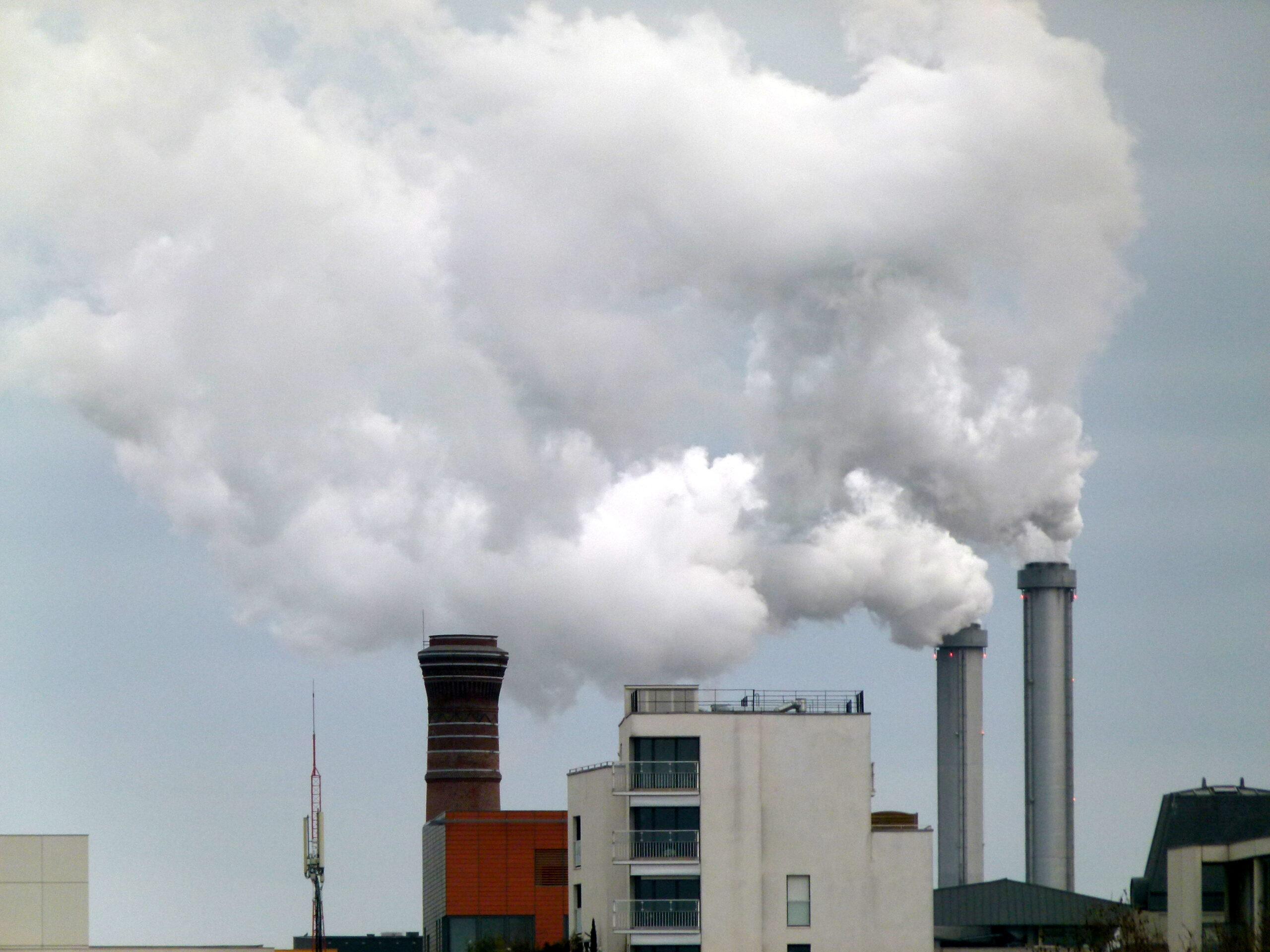 Medgón y el objetivo de la eficiencia energética 2050